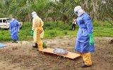 Crean una prueba que detecta el ébola en minutos