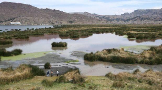 Lago Titicaca: preparan plan de recuperación ambiental