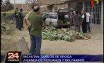 SMP: incautan 70 kilos de droga en cargamento de plátano