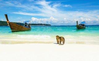 Cinco playas paradisíacas de Tailandia poco conocidas