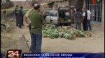 SMP: incautan 70 kilos de droga en cargamento de plátano - Noticias de clorhidrato de cocaína