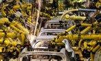 Robot mata a un hombre en una planta de Volkswagen en Alemania