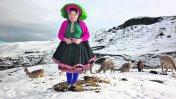 Seis regiones en alerta por bajas temperaturas