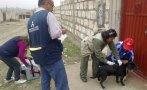 Unos 170.000 perros serán vacunados gratuitamente en Arequipa