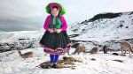 Seis regiones en alerta por bajas temperaturas - Noticias de provincia de caylloma
