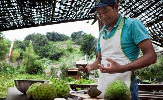 Disfruta de una buena cosecha en el distrito de Callahuanca