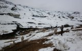 Recomiendan evitar tránsito en rutas altoandinas por nevadas