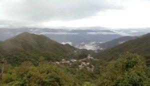Colombia: incautan cocaína en viaje a EE.UU. [VIDEO]