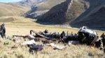 Se eleva a 9 número de muertos por caída de camión a un abismo - Noticias de essalud