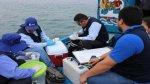 ANA monitorea la calidad del agua de la bahía de Paita - Noticias de paita