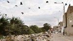 Chiclayo: Vuelos en riesgo por botadero cercano al aeropuerto - Noticias de jose luis naves