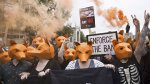 Multitudinaria protesta contra la caza del zorro en Londres - Noticias de jane goodall