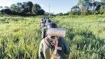 En el Vraem no se replica éxito de Huallaga contra narcotráfico - Noticias de fernando obregon