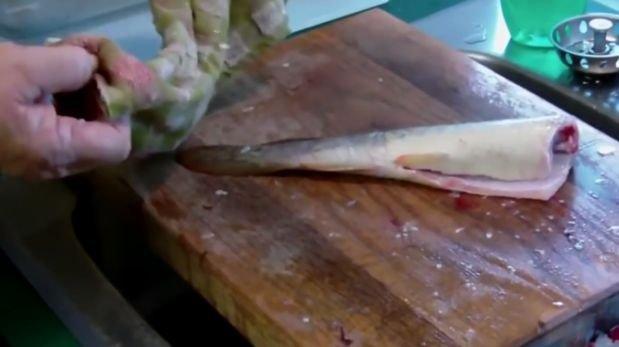 video pescado:
