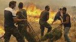 Incendios gigantes dejan al menos un muerto en Grecia - Noticias de cincuenta mejores ciudades