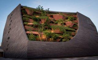 Descubre el nuevo Museo de Historia Natural de Singapur