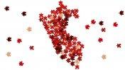 Perú 194, por Gonzalo Portocarrero