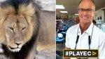 El dentista que mató a Cecil, el león más querido de Zimbabue - Noticias de new york