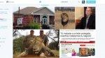 Muerte de león famoso desata polémica e indignación en redes - Noticias de alyssa milano