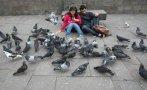 Alimentar palomas en La Punta te costará 385 soles