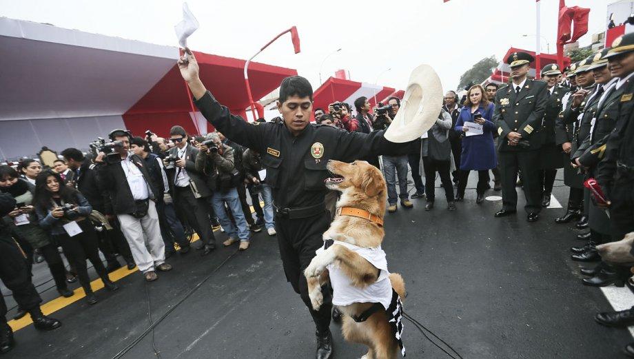 Gran Parada Militar y las imágenes que no viste del desfile