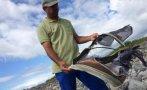 Búsqueda del MH370: Hallan parte de una maleta en isla