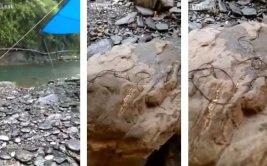 """""""Extrañas criaturas"""" aparecieron sobre rocas en Taiwán [VIDEO]"""