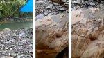 """""""Extrañas criaturas"""" aparecieron sobre rocas en Taiwán [VIDEO] - Noticias de internet"""