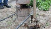 Av. Javier Prado: cinco palmeras han sido dañadas [FOTOS]