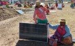 Puno: islas de los Uros serán iluminadas con paneles solares