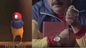 Esta es la publicidad sobre el pajarito que enfureció a Maduro