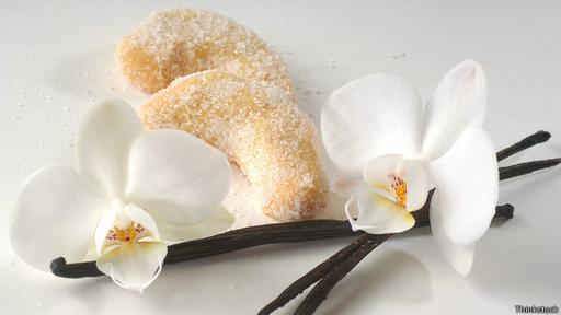 Las orquídeas son las