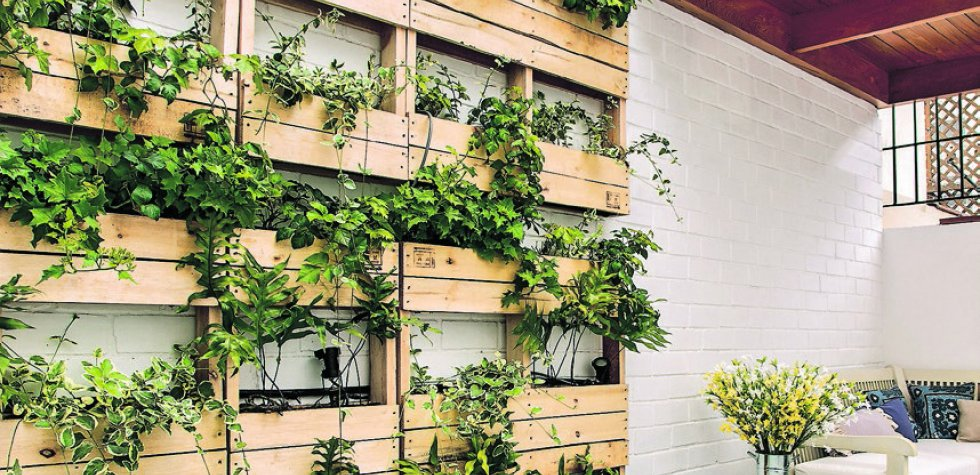 Casa y m s el comercio peru for Jardines verticales lima