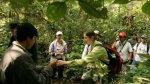 El Sernanp desarrolla proyectos en turismo por S/.90 millones - Noticias de parque nacional huascarán
