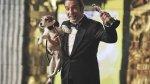 """Uggie, el perro de """"The Artist"""": un repaso a sus mejores fotos - Noticias de jack russell"""
