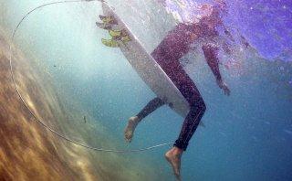 Usan un repelente eléctrico contra tiburones