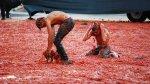 La Tomatina: 70 años de la primera batalla de tomate - Noticias de movimiento jóvenes del pueblo