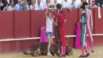 Mujer ingresó al ruedo para defender a toro moribundo [VIDEO] - Noticias de antitaurino