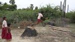 Jardines ofrecen esperanza ante subida de nivel de aguas - Noticias de desastres naturales