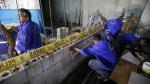 Municipalidad de Lima paralizó construcción de carceletas en MP - Noticias de inpe