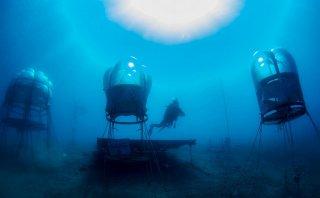 Mira esta impresionante técnica de agricultura submarina