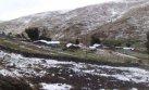 Sierra sur espera bajas temperaturas de hasta -18 grados