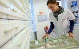 Farmacéuticas indias buscan joint ventures en el Perú