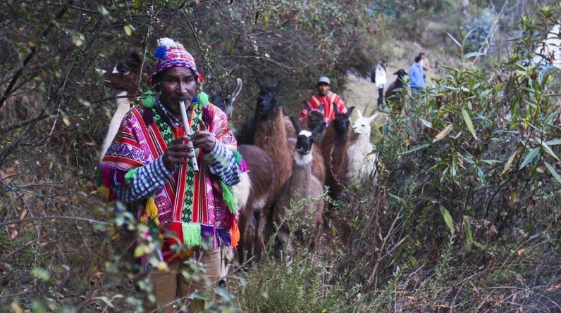 Leoncio Ortiz es un comunero de Cancha Cancha que trabaja en los trekking de Llamapack en Urubamba (Cusco). Él acompaña la ruta con su quena. (El Comercio / Juan Ponce)