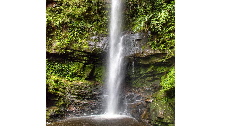 43b5709855 Cinco motivos para visitar la selva del Perú