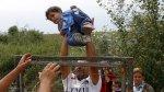 La valla de 175 km que Hungría levantó contra los inmigrantes - Noticias de jiron andahuaylas