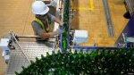 ¿Llegó la hora de tomar cerveza en botella de plástico? - Noticias de botellas recicladas