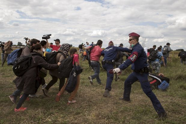Hungarian police officers stop migrants as they try to escape on a field nearby a collection point in the village of Roszke, Hungary, September 8, 2015. REUTERS/Marko Djurica