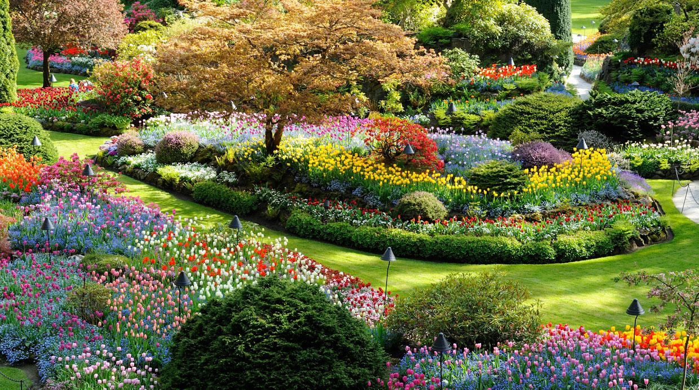 Conoce 10 jardines de ensue o en su momento de primavera for Jardines de primavera