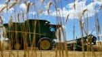 Estiman que precios de granos bajarán pese a efectos de El Niño - Noticias de louis dreyfus